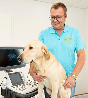 Bildgebende Diagnostik in der Tierarztpraxis Dr. Thormann in Bönen
